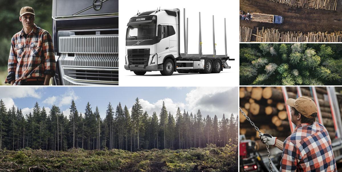 Volvo Nyckelfärdig - Timmer